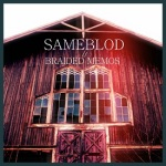 sameblod_braidedmemos